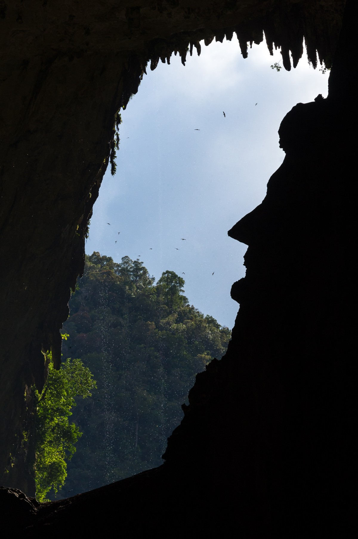 Face structure in a cave